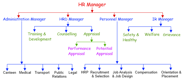 human resource management activities in healthcare essay Free human resource management papers, essays, and research papers   human resource management and health care - i introduction human  resource.