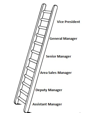 An example of a career ladder