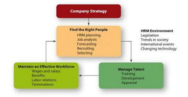 Key Features Of Strategic Human Resource Management
